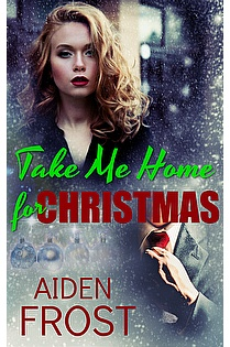 Take Me Home for Christmas ebook cover