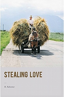 Stealing love  ebook cover